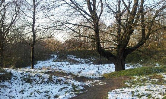 Hill 60, Ieper (Ypres)