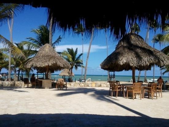 Dreams Punta Cana Resort & Spa: Dreams Punta Cana Oceanview 