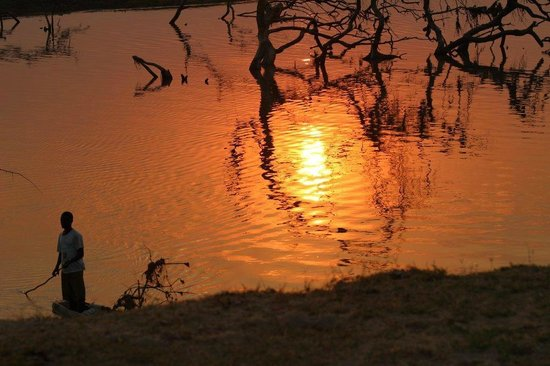 Track and Trail River Camp: Sunset Luangwa