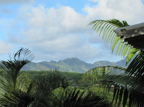 Kauai Banyan Inn: Mountain views from balcony