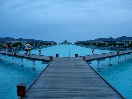 Sun Island Resort: water bungalows