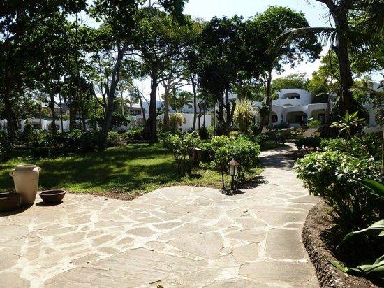 Ocean Village Club: Garden