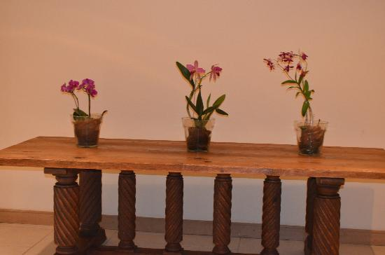 Sheraton Iguazu Resort & Spa: pasillos con flores 