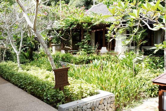Pangkor Laut Resort: Villas