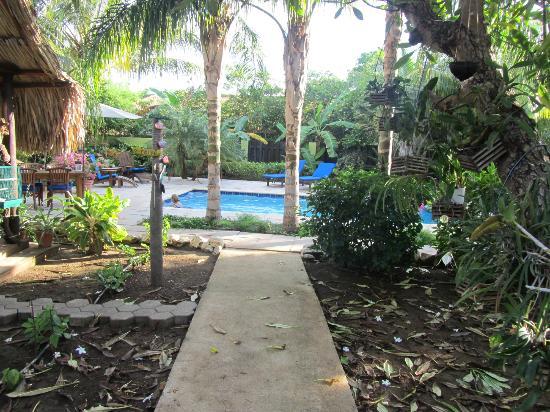 Villa L'Orangerie: pool