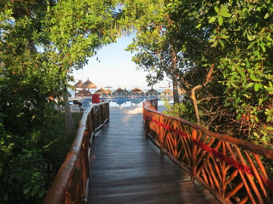 Royal Level at Occidental Cozumel: Bridge to beach and pool