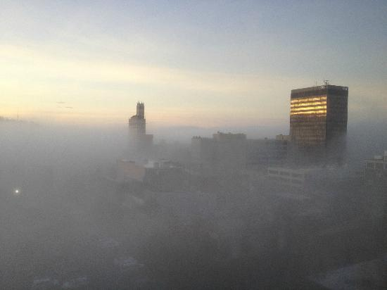 Renaissance Asheville Hotel : foggy morning view from room
