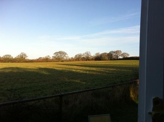 Leyland Country House: view from the barn kitchenette .... lovely!