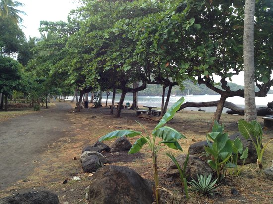 Playa Hermosa: Walking trail along beach