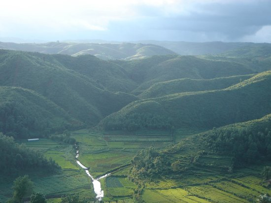 Mawphlang Sacred Forest: This is the view over looking the road to Mawsynram