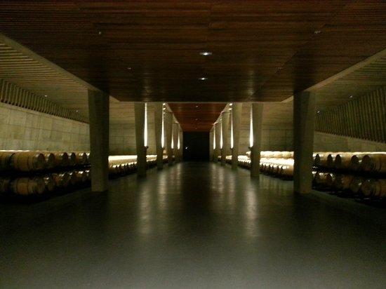 Bodegas Portia : Sala de barricas