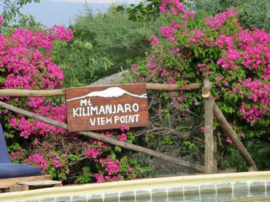 Kia Lodge – Kilimanjaro Airport: Anlage