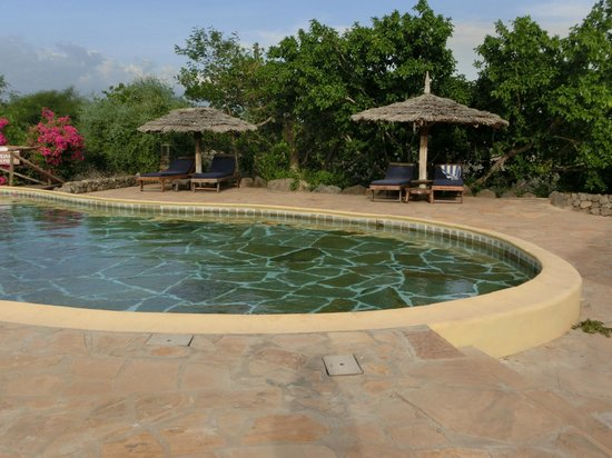 Kia Lodge – Kilimanjaro Airport: Pool
