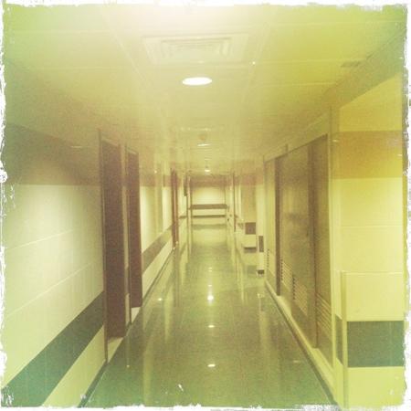 Admiral Plaza Hotel: corridors