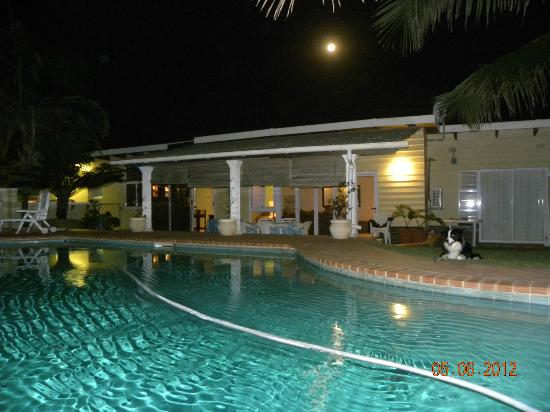 Beachside Guest House: swimming pool at night