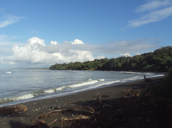 Copa de Arbol Beach and Rainforest Resort: Beach at Corcovado