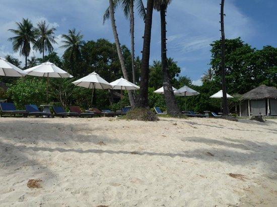Coral Bay Resort: Strand
