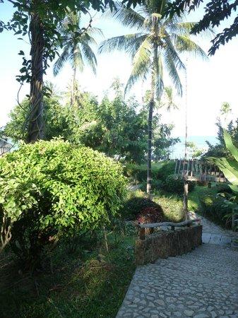 Coral Bay Resort: Weg zum Strand