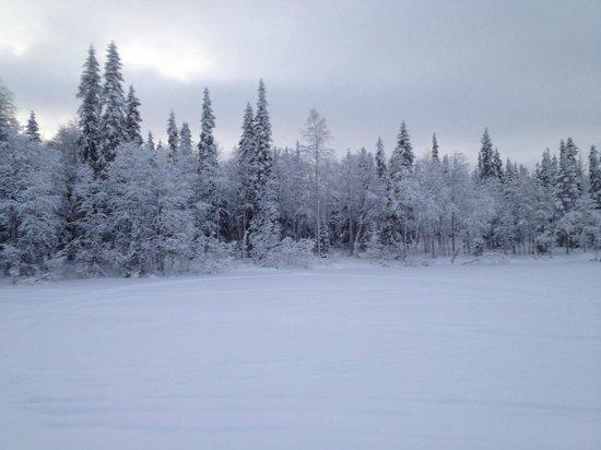 Levi Hotel Spa: Frozen lake on ski-doo trip