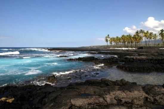 Pu'uhonua O Honaunau National Historical Park: The beaches at the park