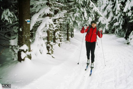 Biko Adventures Prague - Mountain Bike & Outdoor Tours: Cross country skiing tour