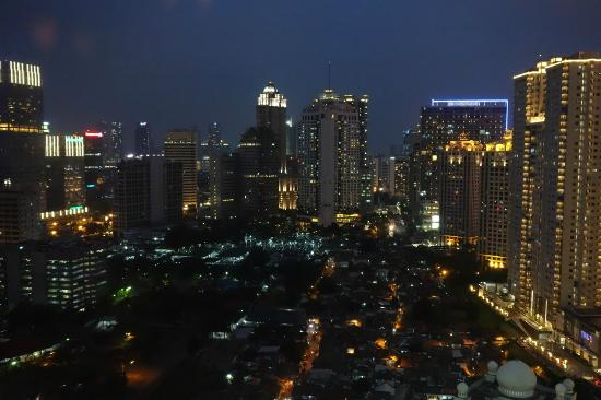 Shangri-La Hotel Jakarta: view from room