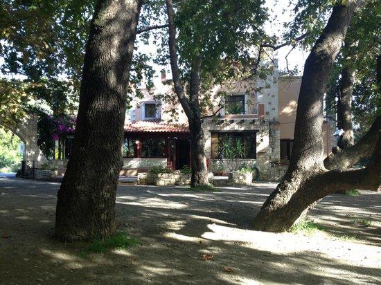 Drakiana Cafe Restaurant: DRAKIANA TAVERNA - PLATANIAS - CHANIA - CRETE - GREECE
