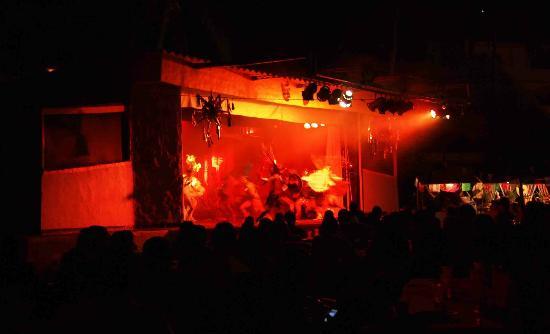 Tenacatita, Mexico: nightly show