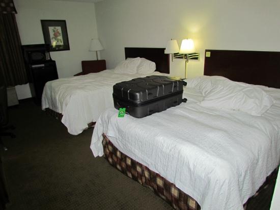 Hampton Inn Bremen-I-20 (Carrollton Area) : Two Beds