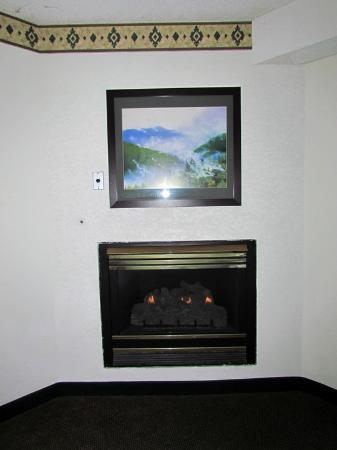 Quality Inn Creekside: Fireplace
