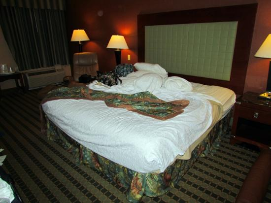 Best Western Plus Inn at Valley View: King Bed