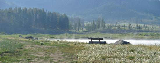 Devil's Thumb Ranch Resort & Spa: The beginners fishing pond with early mist