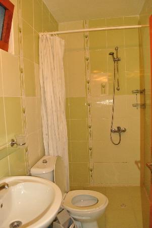 Aspawa Pension Hotel : The bathroom