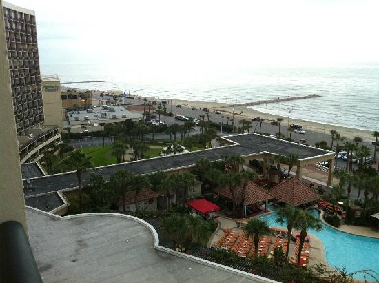 pool area picture of the san luis resort galveston. Black Bedroom Furniture Sets. Home Design Ideas