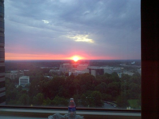 The Ritz-Carlton, Tysons Corner: View