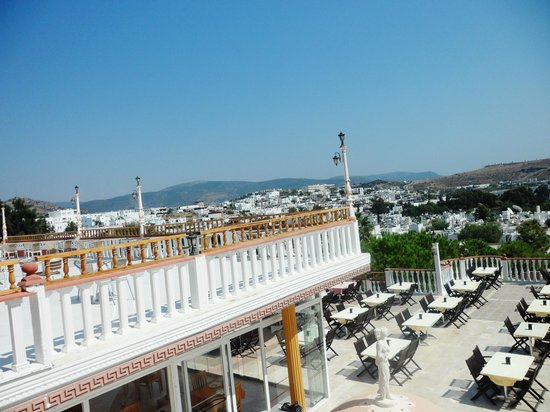 Palm Garden Hotel: view
