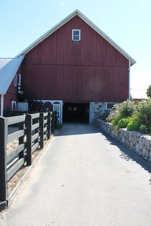 Black Star Farms Winery: Picture of one of the stables