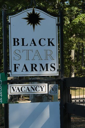 Black Star Farms Winery : Welcome!