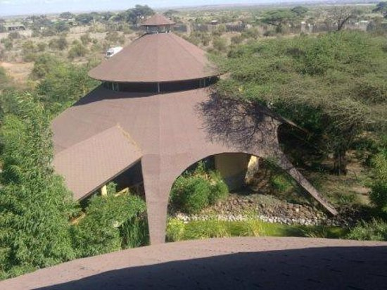 Kilima Safari Camp: Roof from view tower