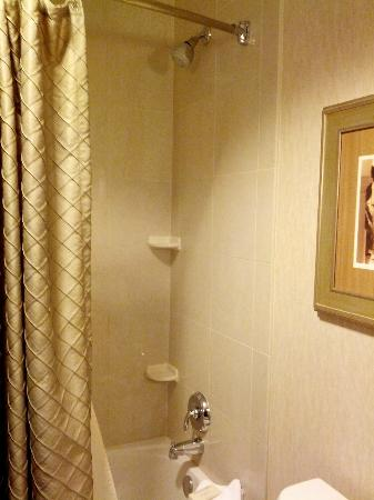 Hilton Dallas/Southlake Town Square: Shower (Room 540)