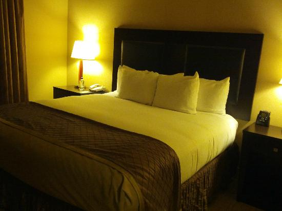 Hilton Dallas/Southlake Town Square: Bedroom (Room 540)