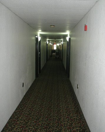 Econo Lodge Cartersville: Dirty old carpet.