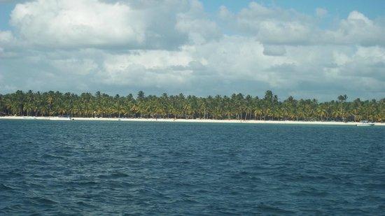 Grand Bahia Principe Punta Cana: Saona isla