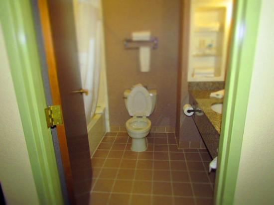 Holiday Inn Express Hotel & Suites - Pell City: Bathroom