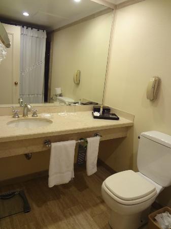 InterContinental Hotel Buenos Aires: Bathroom (4)