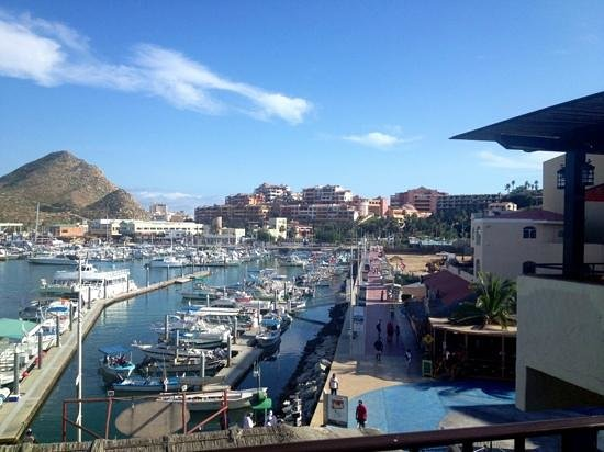 Tesoro Los Cabos: one view from the pool area