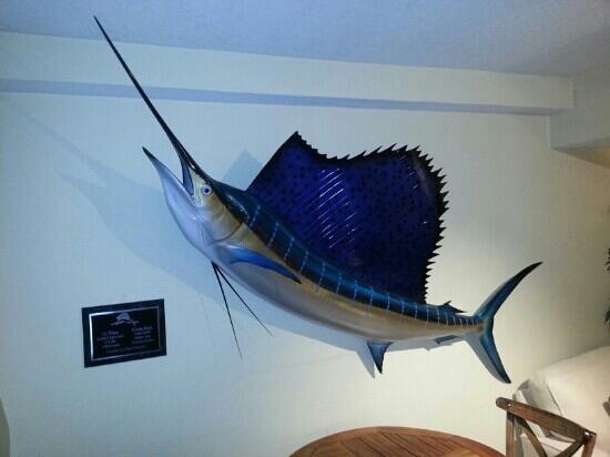 إن أون دستين هاربور: marlin in lobby