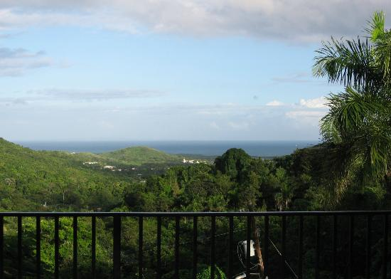 Ceiba Country Inn: View of the Ocean