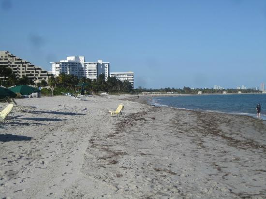 The Ritz-Carlton Key Biscayne, Miami: The beach
