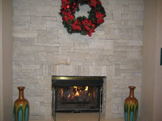 Homewood Suites by Hilton Chicago Schaumburg : Lobby fireplace--great place to warm up.